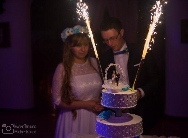 Młoda para w plenerze podczas wesela